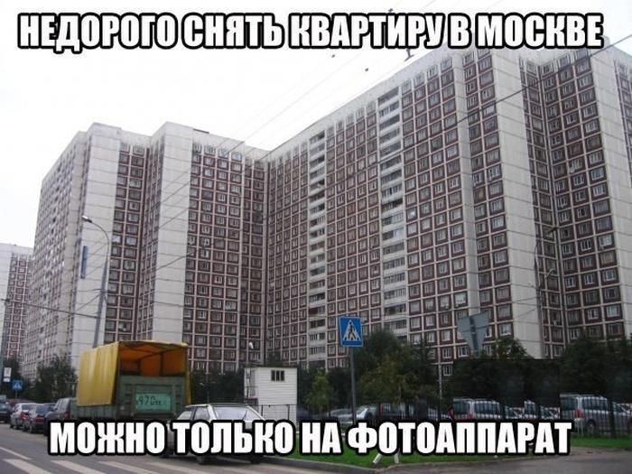 выдам жолтой дождь в москве